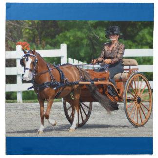 Walnut Hill Carriage Driving Show 2015 Cloth Napkin