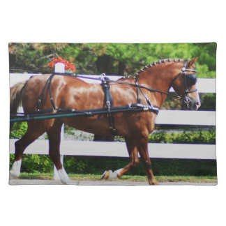 Walnut Hill Carriage Driving Show 2015 Cloth Placemat