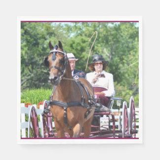 Walnut Hill Carriage Driving Show 2015 Napkin