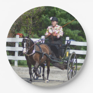 Walnut Hill Carriage Driving Show 2015 Paper Plate
