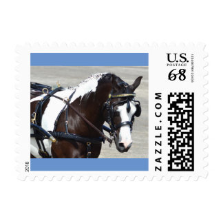 Walnut Hill Carriage Driving Show 2015 Postage