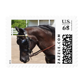Walnut Hill Carriage Driving Show 2015 Postage Stamp