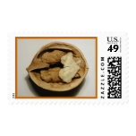 Walnut postage stamp