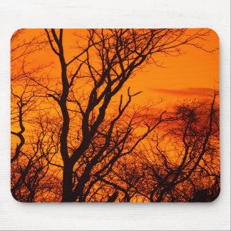 Walnut Tree Silhouette Mousepad