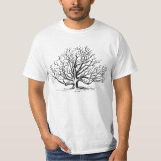 Walnut tree T-Shirt