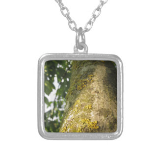 Walnut tree trunk with yellow moss fungus silver plated necklace