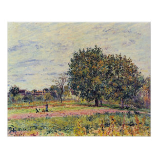 Walnut trees in the sun, in early October - Sisley Posters