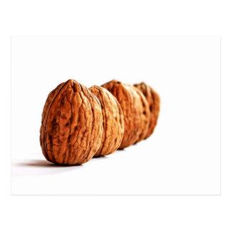 Walnuts - Postcard