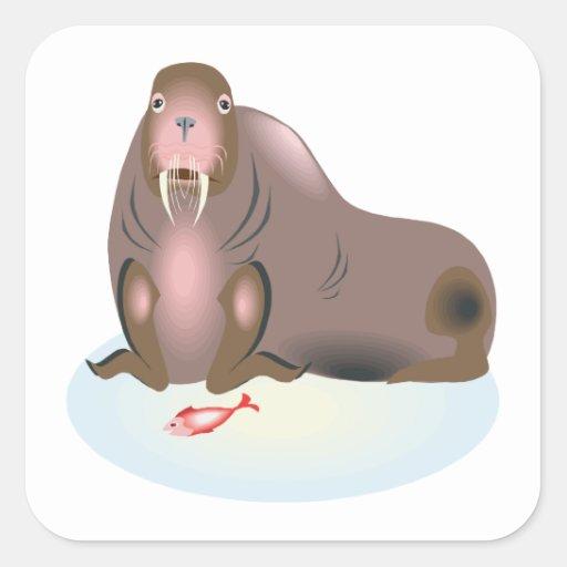 Walrus 2 square stickers