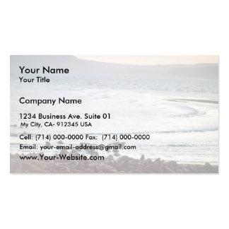 Walrus Business Card Template