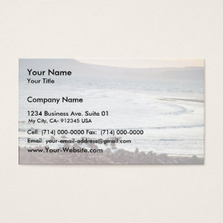 Walrus Business Card