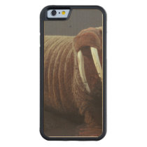 Walrus Carved Maple iPhone 6 Bumper Case