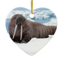 Walrus Ceramic Ornament