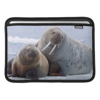 Walrus cow and calf rest on a sea ice floe sleeve for MacBook air