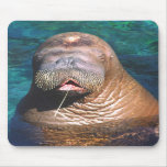 Walrus Eyes Closed Mousepad