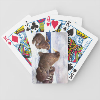 Walrus - F.W. Kuhnert Playing Cards