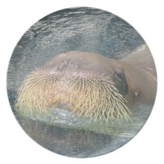 Walrus Face Plates