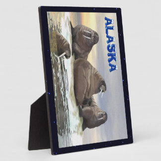 Walrus - Four Brothers Plaque