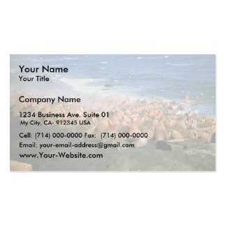 Walrus Herd at Haulout Double-Sided Standard Business Cards (Pack Of 100)
