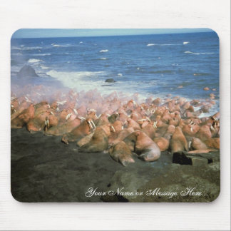 Walrus Herd at Haulout Mouse Pad