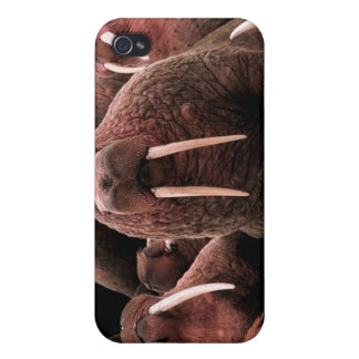 Walrus Covers For iPhone 4