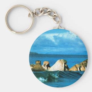 Walrus Key Chains