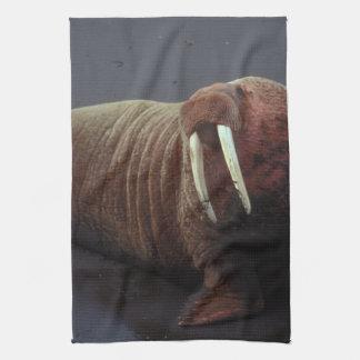 Walrus Kitchen Towel