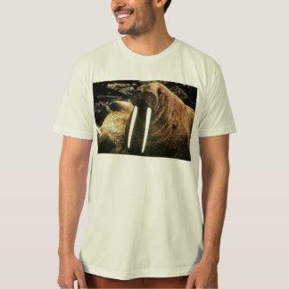 Walrus Male T-Shirt