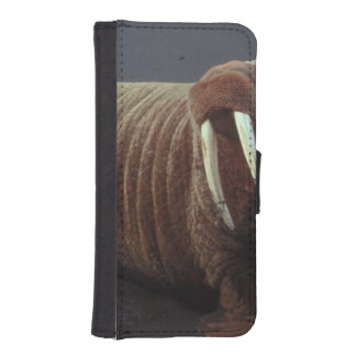 Walrus Phone Wallet Cases