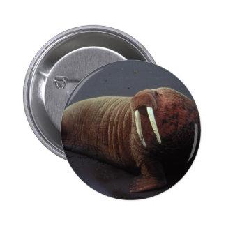 Walrus Round Button