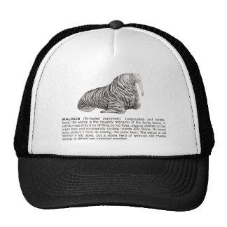 walrus trucker hat
