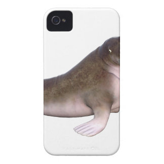 Walrus with quizzical look iPhone 4 cover