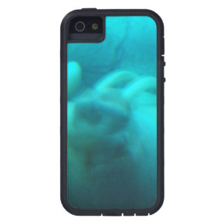 Walruses Cover For iPhone 5