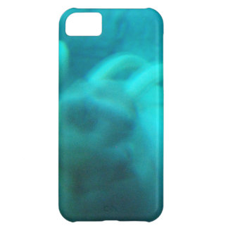 Walruses iPhone 5C Cases