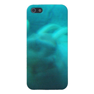 Walruses iPhone 5 Case