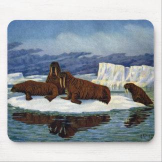 Walruses on an Ice Floe Mouse Pad
