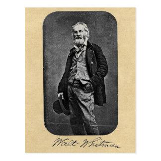 Walt Whitman Age 41 Portrait Postcard