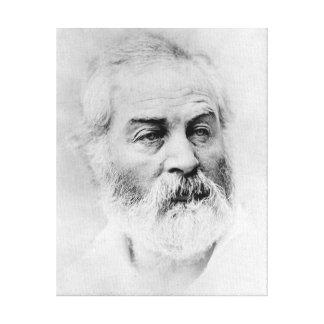 Walt Whitman Age 44 Civil War Years Canvas Print