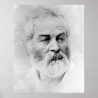 Walt Whitman Age 44 Civil War Years Poster