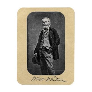 Walt Whitman as a Young Man Magnet