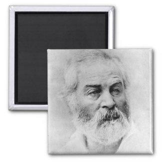 Walt Whitman Civil War Magnet