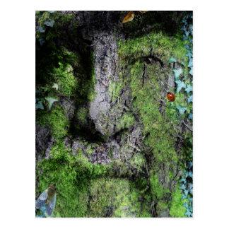 """Walt Whitman: El hombre verde "" Postales"