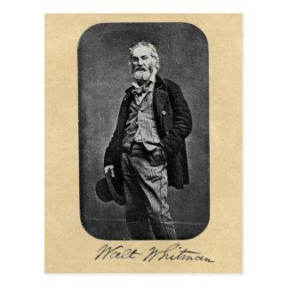 Walt Whitman Leaves of Grass Frontispiece Postcard