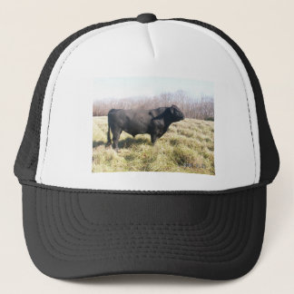 Walter's Hat