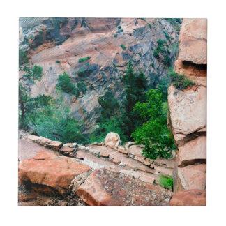 Walters Wiggles Zion National Park Utah Ceramic Tile
