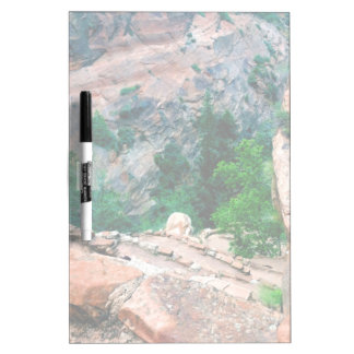 Walters Wiggles Zion National Park Utah Frosted Dry-Erase Board