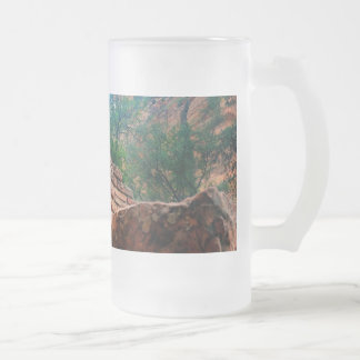 Walters Wiggles Zion National Park Utah Frosted Glass Beer Mug