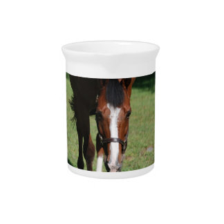 Wandering American Quarter Horse Beverage Pitchers
