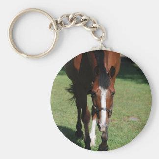Wandering American Quarter Horse Key Chain
