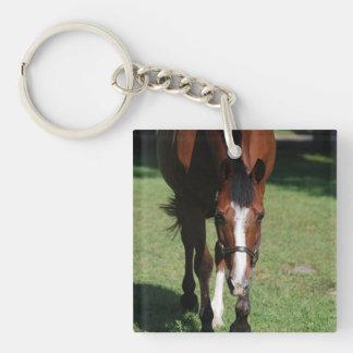 Wandering American Quarter Horse Acrylic Keychain
